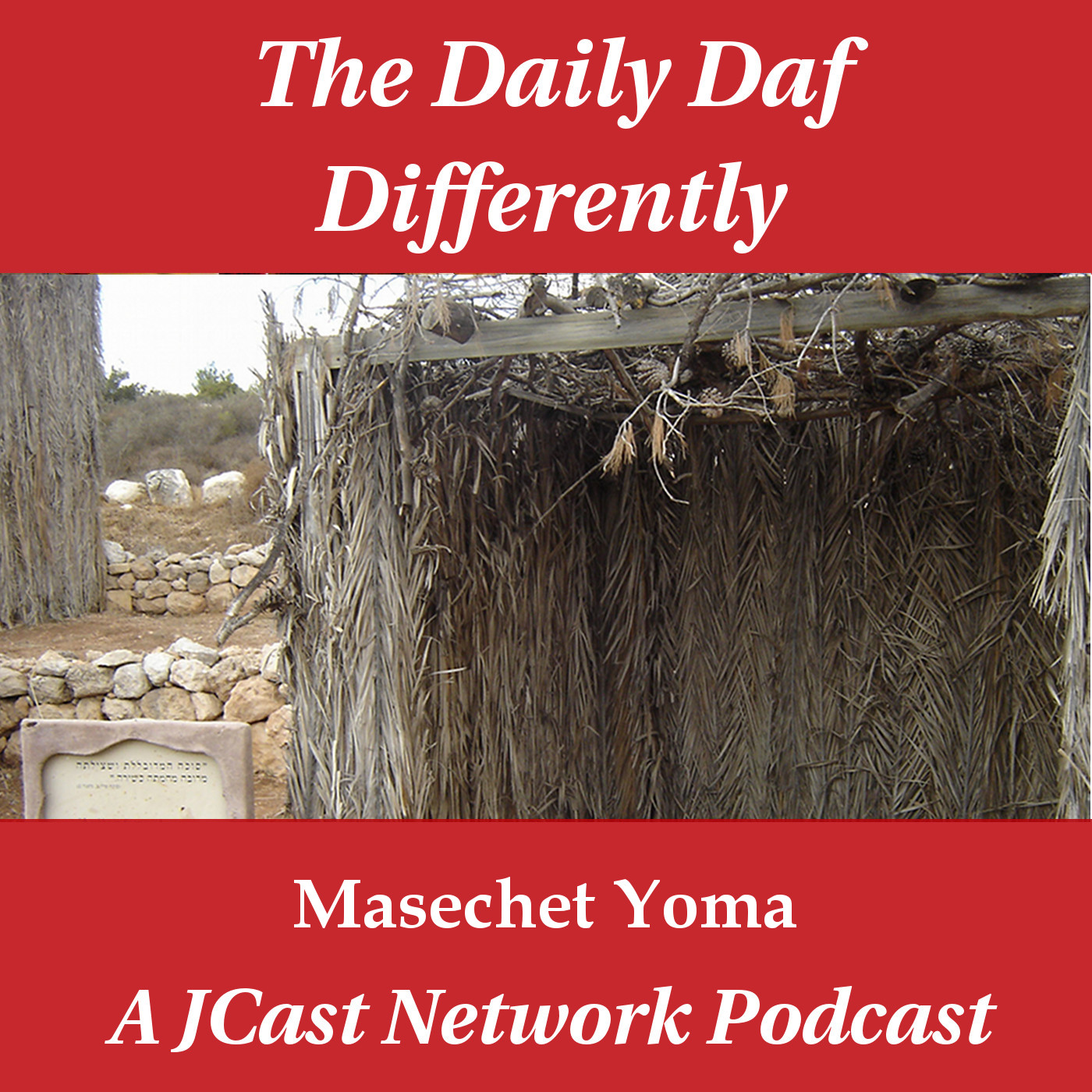 Daily Daf Differently: Masechet Sukkah